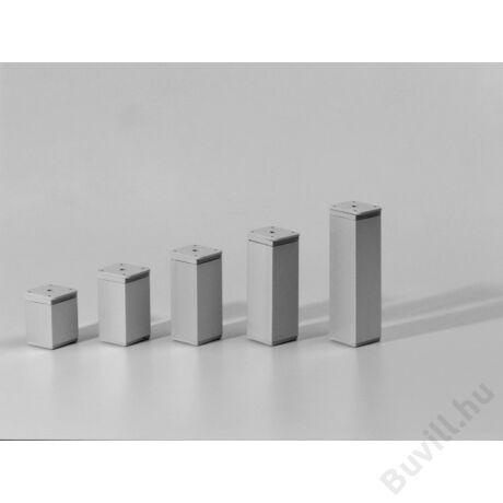 19306 Állítható láb 40X40X100mm Alumínium 10014110220